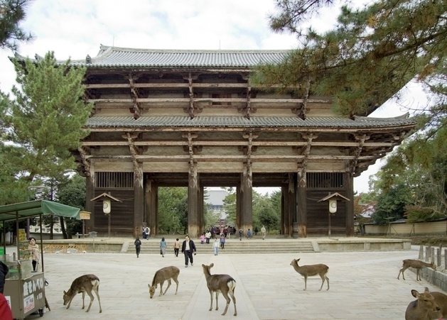 Todaiji Temple South Gate