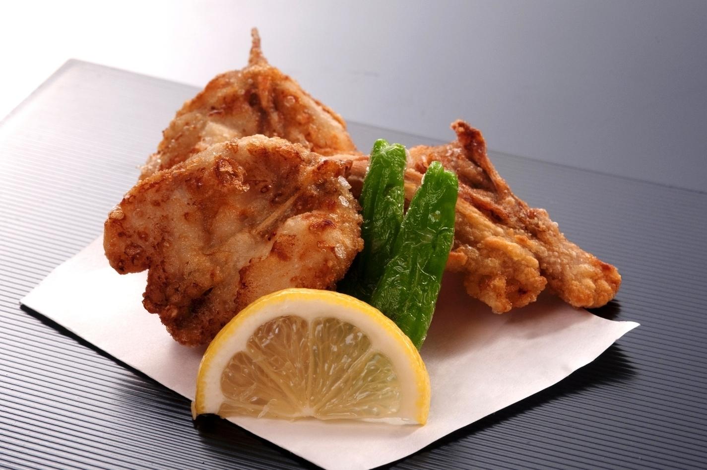 Anori Puffer Fish