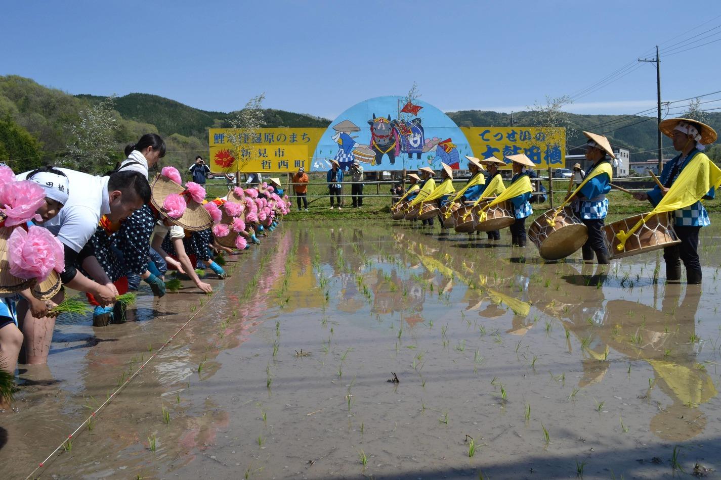 Koigakubo Wetland Festival