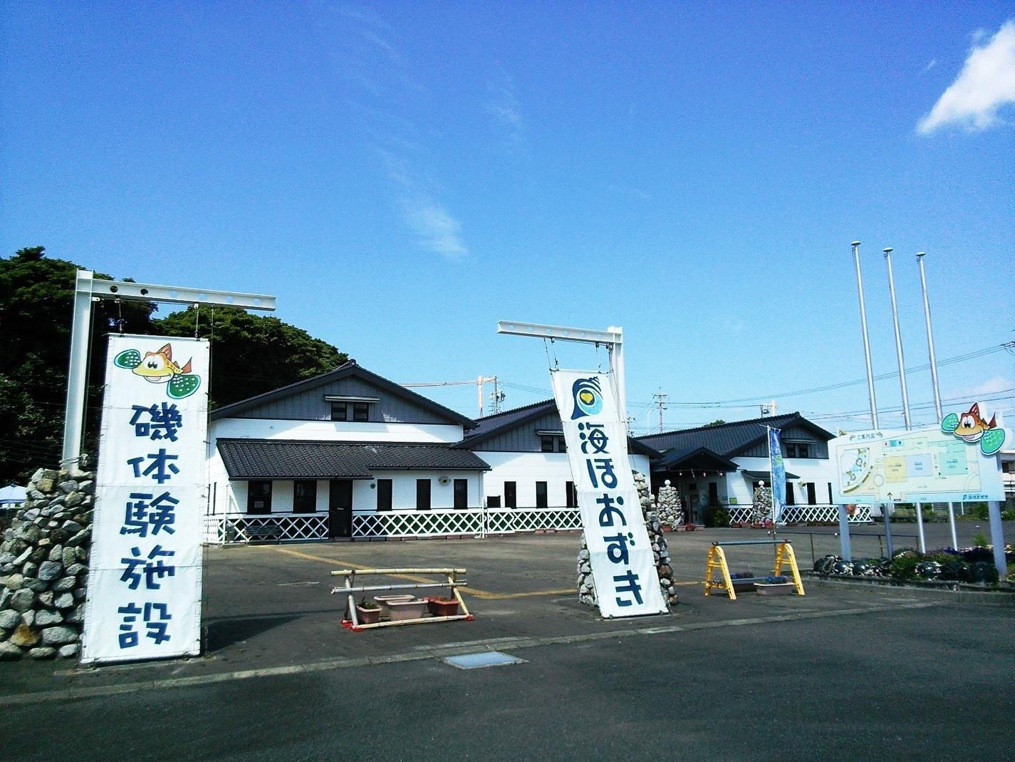 Umihozuki