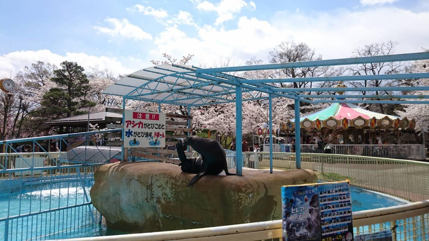 Nagano Johyama Zoo