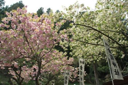Kanazakura-jinja Shrine