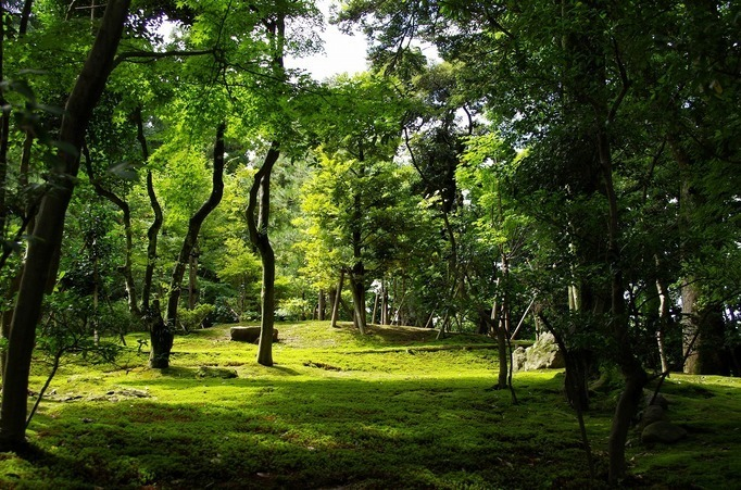 Kenrokuen Garden2