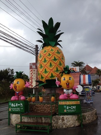 Nago Pineapple Park