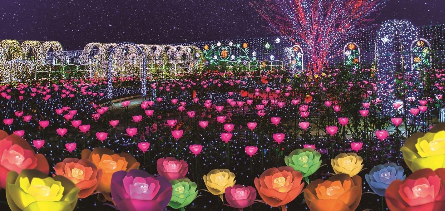 Illumination in Ashikaga Flower Park