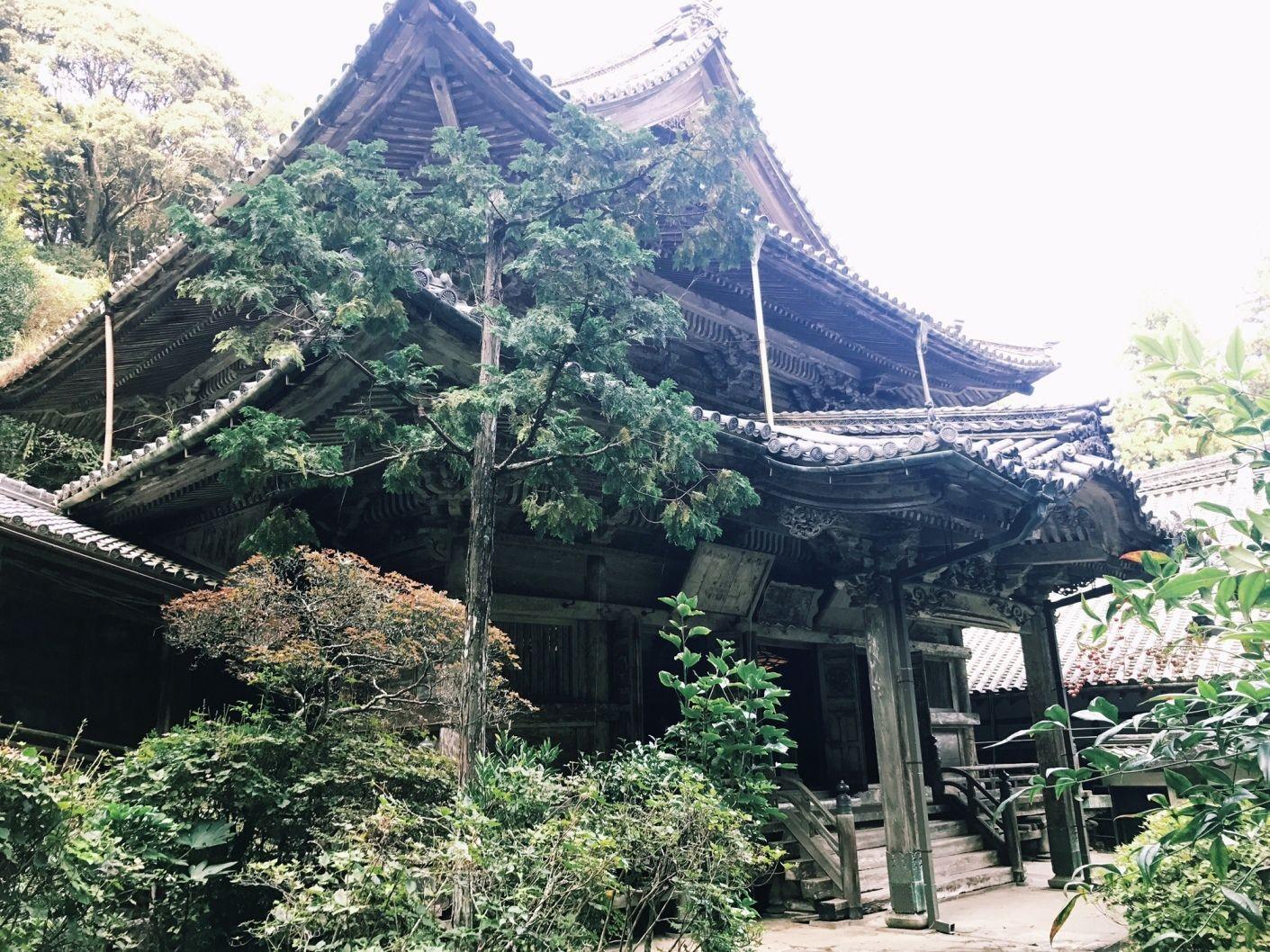 Aonominesan Shofukuji