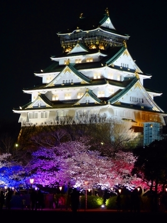 Osaka Castle at Night
